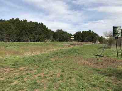 SpiceWood Residential Lots & Land For Sale: 4.214 Acres Cr 414
