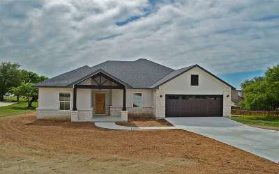 Burnet Single Family Home For Sale: 201 Alexander