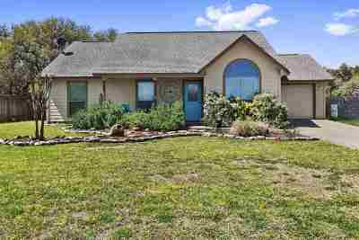 Johnson City Single Family Home For Sale: 309 N Winters Furr