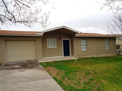 Burnet County Single Family Home For Sale: 305 Amy