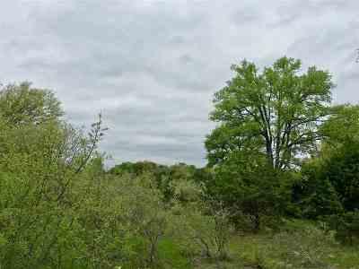 Burnet County Farm & Ranch For Sale: Lot 4, Fm 2657