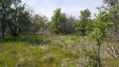 Burnet Residential Lots & Land For Sale: Lot 466 Sage