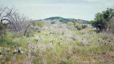 Burnet Residential Lots & Land For Sale: Lots 740/41/42 Spring