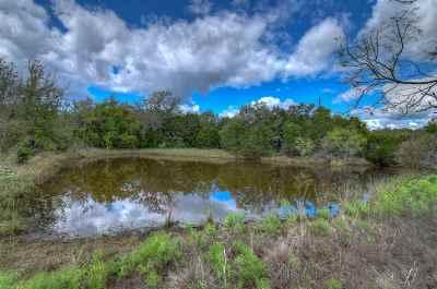 Burnet County Farm & Ranch For Sale: Fm 2341 Lot 2