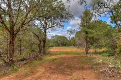 Burnet Farm & Ranch For Sale: Lot 1 Fm 2341