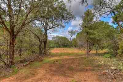 Burnet County Farm & Ranch For Sale: Lot 1 Fm 2341
