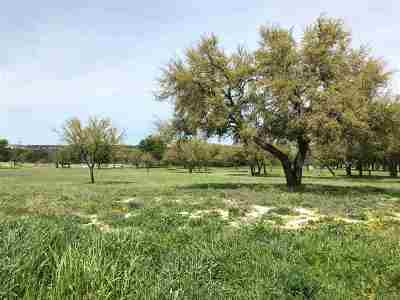 Burnet TX Residential Lots & Land For Sale: $41,500