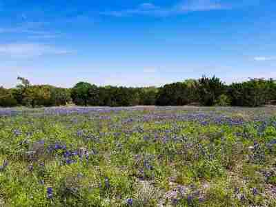 Burnet Farm & Ranch For Sale: 249 Rain Lily