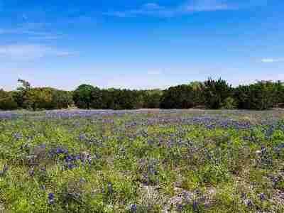 Burnet County Farm & Ranch For Sale: 249 Rain Lily