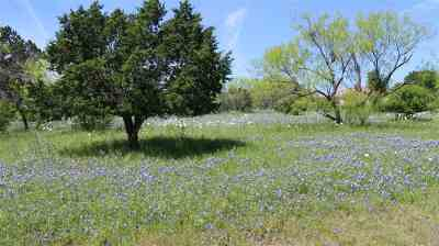 Horseshoe Bay Residential Lots & Land For Sale: 304 Red Wine