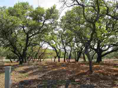 Spicewood Residential Lots & Land For Sale: Zoes Way