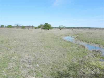 Lampasas County Farm & Ranch For Sale: Cr 2800