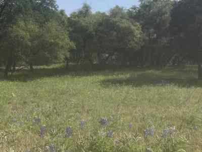 Horseshoe Bay Residential Lots & Land For Sale: 707 Sidewinder