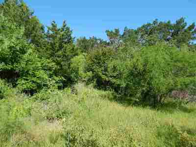 SpiceWood Residential Lots & Land For Sale: 106 Lakeside