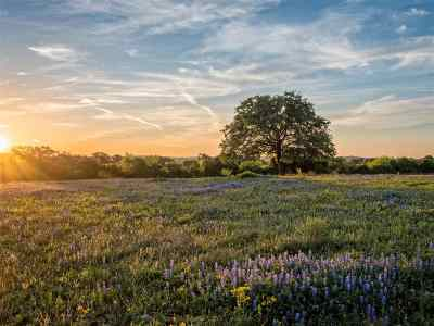 Burnet County, Lampasas County, Bell County, Williamson County, llano, Blanco County, Mills County, Hamilton County, San Saba County, Coryell County Farm & Ranch For Sale: 310 County Road 344