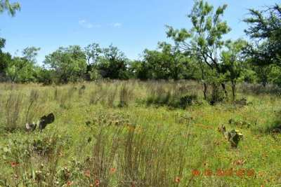 Granite Shoals Residential Lots & Land For Sale: Lot 237-240 Timber Valley Lane