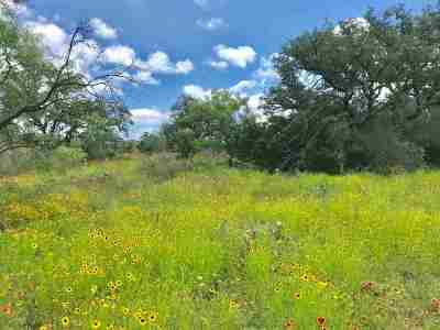 Bell County, Burnet County, Coryell County, Lampasas County, Mills County, Williamson County, San Saba County, Llano County Residential Lots & Land For Sale: Cr 117