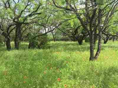 Lampasas Farm & Ranch For Sale: N Us Hwy 281