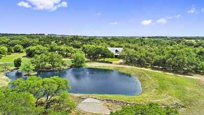 Burnet County, Lampasas County, Bell County, Williamson County, llano, Blanco County, Mills County, Hamilton County, San Saba County, Coryell County Farm & Ranch For Sale: 896 Triple S