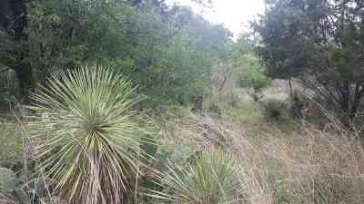 Granite Shoals Residential Lots & Land For Sale: 478 W Castleberry