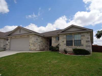 Burnet TX Single Family Home Pending-Taking Backups: $214,900