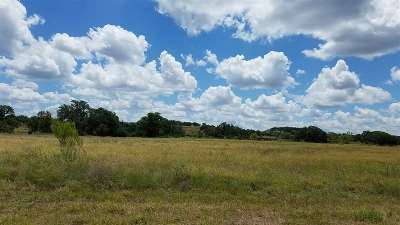 Marble Falls Residential Lots & Land For Sale: 42 Bosque Trail