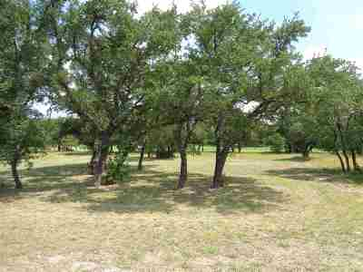 Burnet Residential Lots & Land For Sale: 119 Rachel