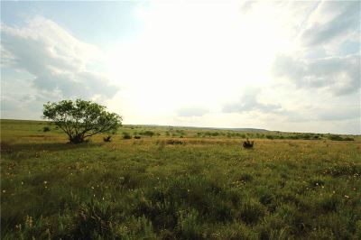 Lampasas Farm & Ranch For Sale: 2614 Cr 2109