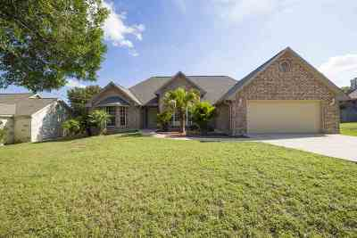 Marble Falls Single Family Home For Sale: 506 Amy Circle