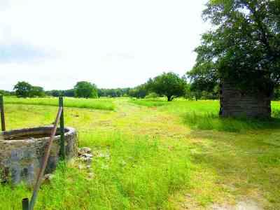 Burnet County Farm & Ranch For Sale: Noname