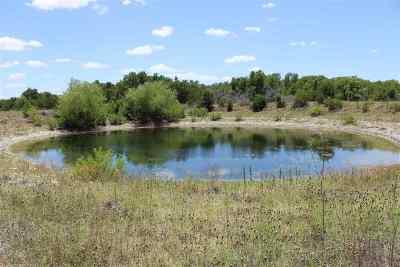Lampasas County Farm & Ranch For Sale: 6903-3 Cr 2001