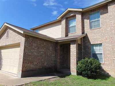 Marble Falls Rental For Rent: 107 E Wildflower