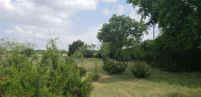 Lampasas Farm & Ranch For Sale: Bcr 103