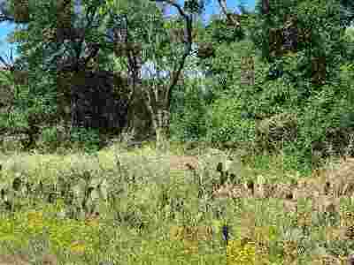 Granite Shoals Residential Lots & Land For Sale: Lots 242, 243 Prairie Creek