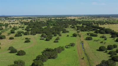 Burnet County Farm & Ranch For Sale: Cr 216
