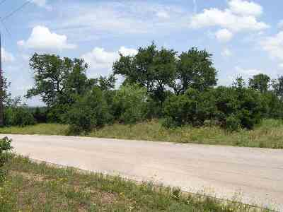 Burnet Farm & Ranch For Sale: Lot 12 Backbone Creek