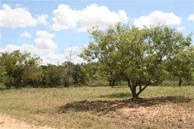 Granite Shoals Residential Lots & Land For Sale: 180/181 Rock Downs