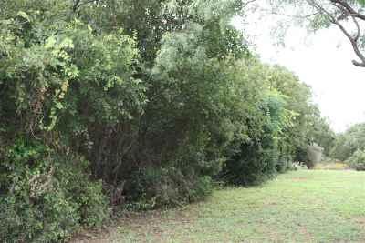 Burnet Residential Lots & Land For Sale: Lot 3 E Cr 139