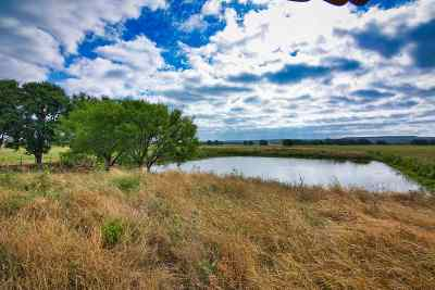 Burnet County, Lampasas County, Bell County, Williamson County, llano, Blanco County, Mills County, Hamilton County, San Saba County, Coryell County Farm & Ranch For Sale: 335 Cr 314