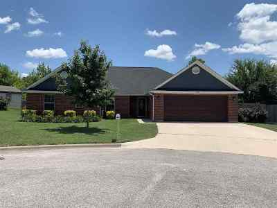 Burnet Single Family Home For Sale: 1303 E Johnson