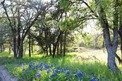 Marble Falls Residential Lots & Land For Sale: 900 Via Viejo