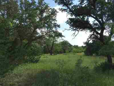 Spicewood Residential Lots & Land For Sale: Lot 3 Block C Vista View Trail
