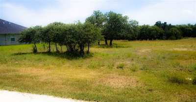 Burnet Residential Lots & Land For Sale: Lot 5 Rachel