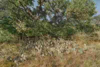 Granite Shoals Residential Lots & Land For Sale: Lots 246 & 247 E Persimmon