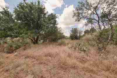 Granite Shoals Residential Lots & Land For Sale: Lots 797 & 798 W Hickory