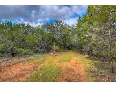 Burnet Farm & Ranch For Sale: Lot 5 Rm 2341
