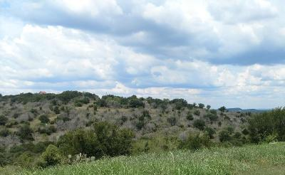 Marble Falls Residential Lots & Land For Sale: Palmie Rd