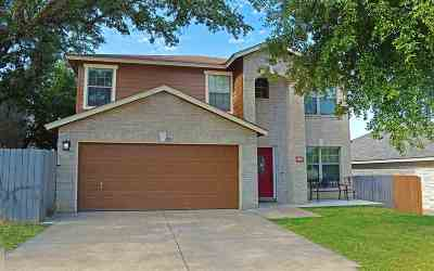 Marble Falls Single Family Home For Sale: 110 E Wildflower Blvd.