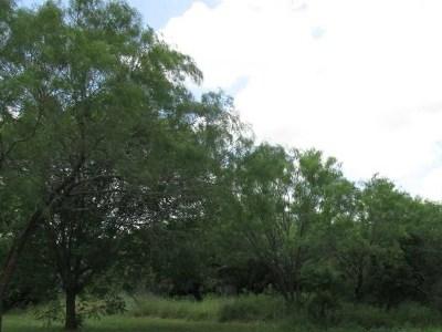 Burnet County Farm & Ranch For Sale: Cr 321