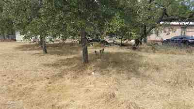 Burnet County Residential Lots & Land For Sale: Tbd Granite Castle